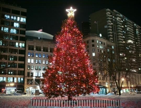 how tall is bostonchristmas tree
