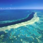 Tourism authority to review Great Barrier Reef safety following deaths
