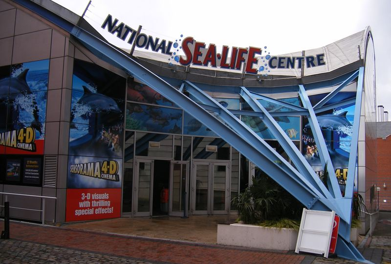 The National SEA LIFE Centre Birmingham plan exciting goodies for ...