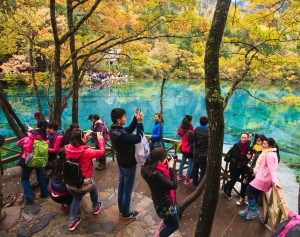 forest tourism in China