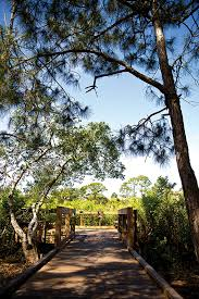 Northwest Florida looking to build eco tourism for revenue