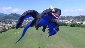 Kite_24.5 meter long Dragon