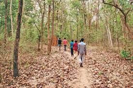 Odisha as eco tourism sites